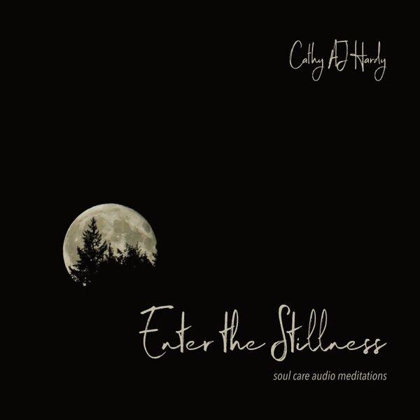 Cover art for Enter the Stillness