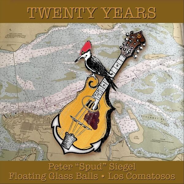 Cover art for Twenty Years