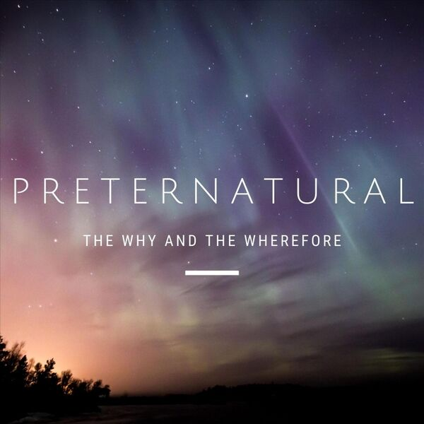 Cover art for Preternatural