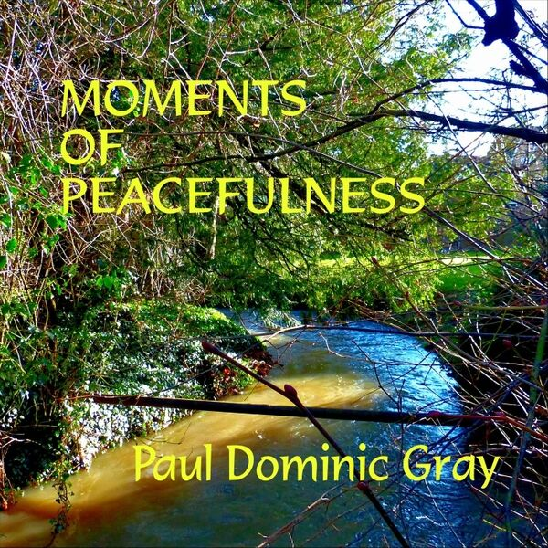 Cover art for Moments of Peacefulness