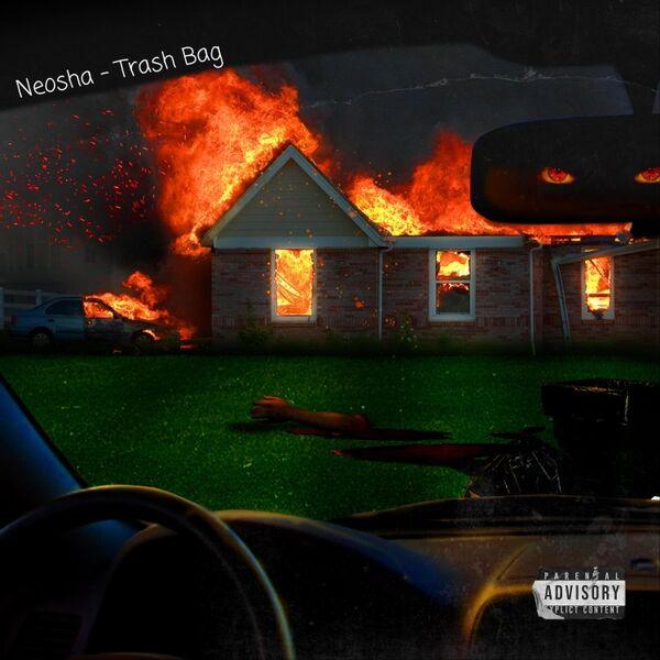 Cover art for Trash Bag
