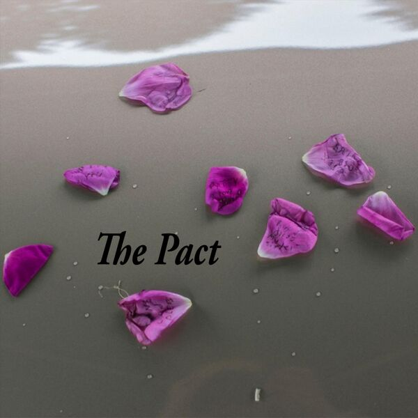 Cover art for The Pact