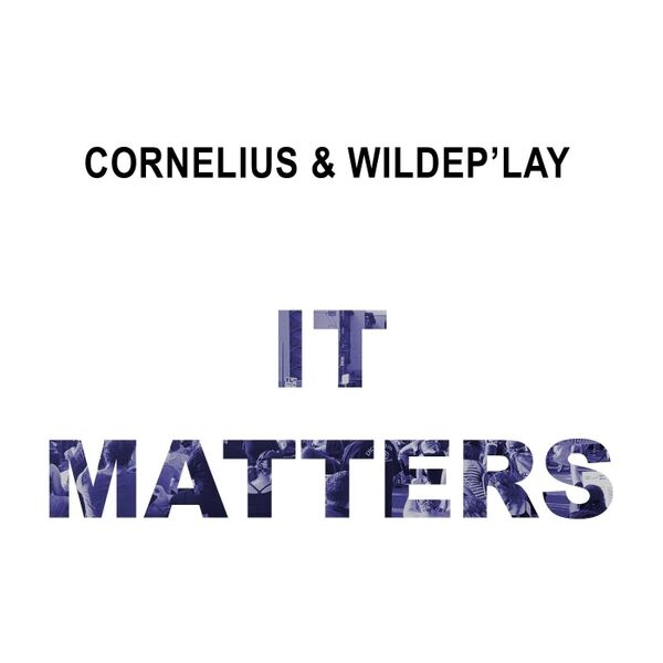 Cover art for It Matters