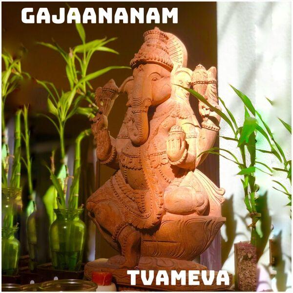 Cover art for Gajaananam