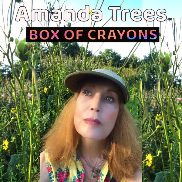 Cover art for Box of Crayons