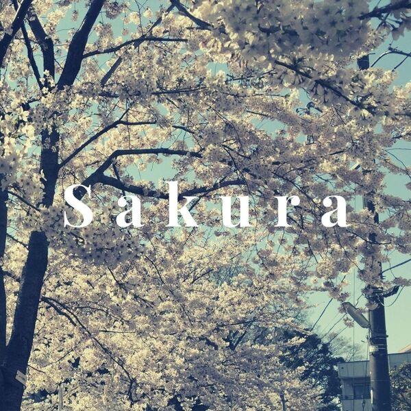 Cover art for Sakura
