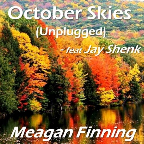 Cover art for October Skies (Unplugged)