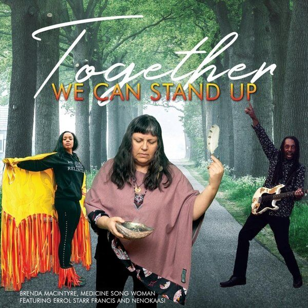 Cover art for Together We Can Stand Up