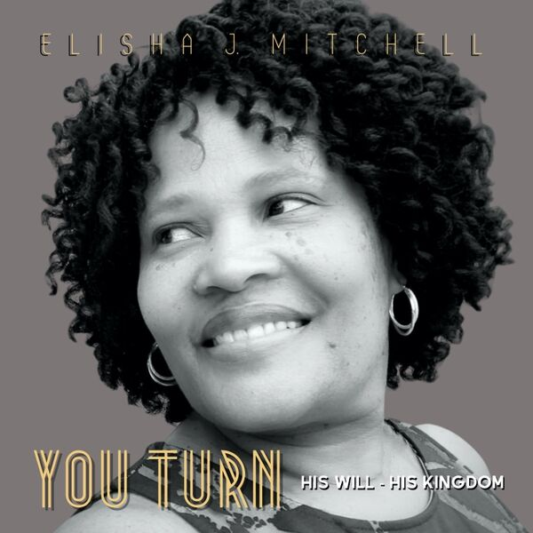 Cover art for You Turn His Will - His Kingdom