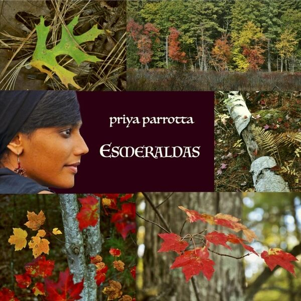 Cover art for Esmeraldas