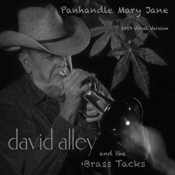 Cover art for Panhandle Mary Jane