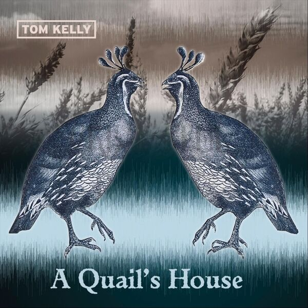 Cover art for A Quail's House