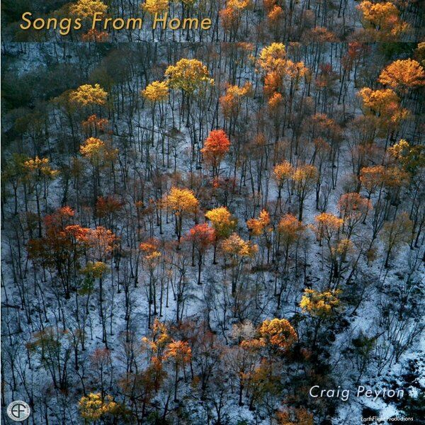 Cover art for Songs from Home