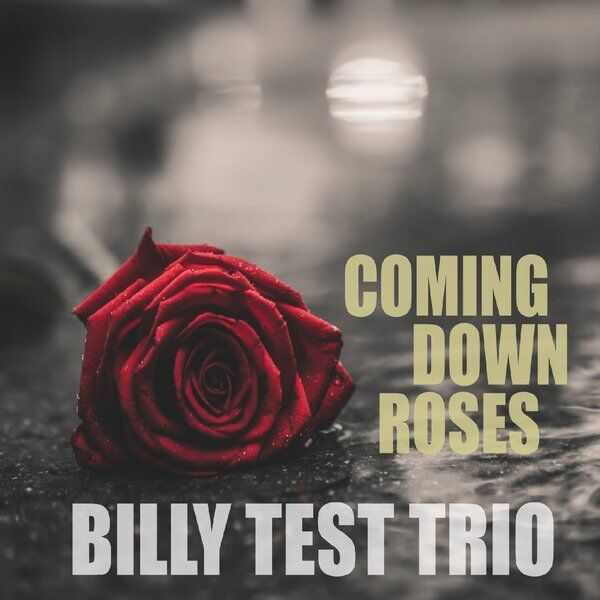 Cover art for Coming Down Roses