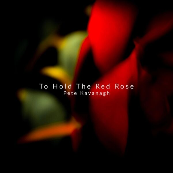 Cover art for To Hold the Red Rose