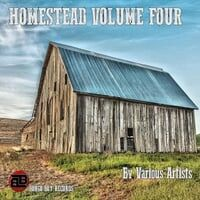 Homestead, Vol. 4