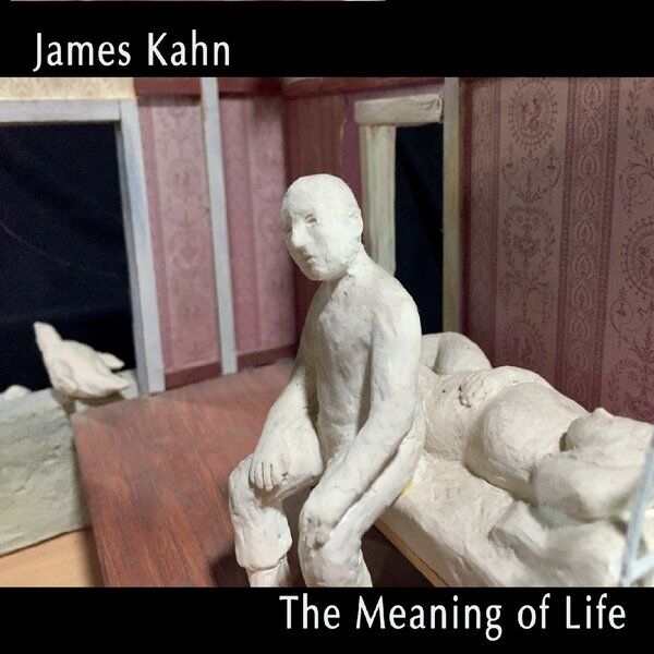 Cover art for The Meaning of Life