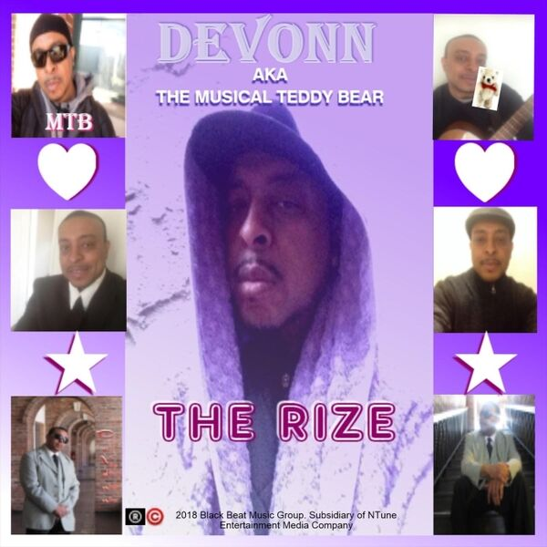 Cover art for The Rize