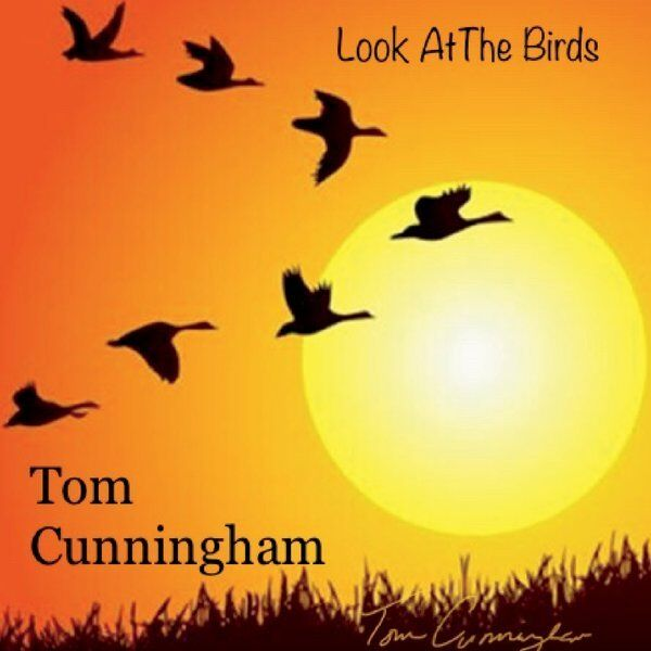 Cover art for Look at the Birds