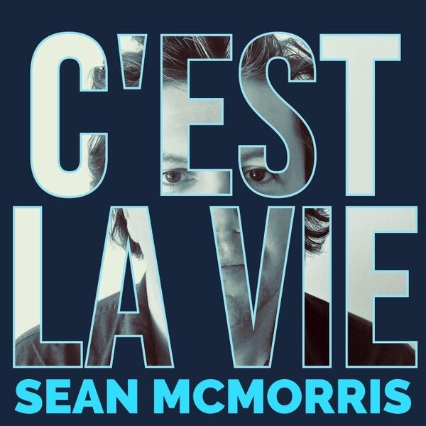 Cover art for C'est la vie