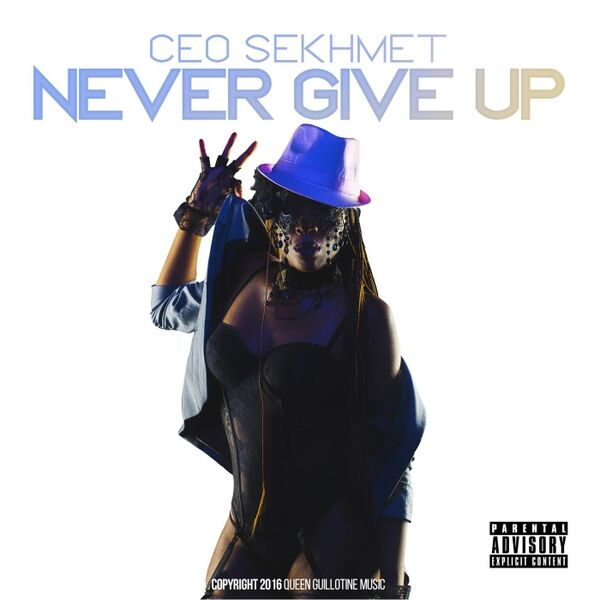 Cover art for Never Give Up