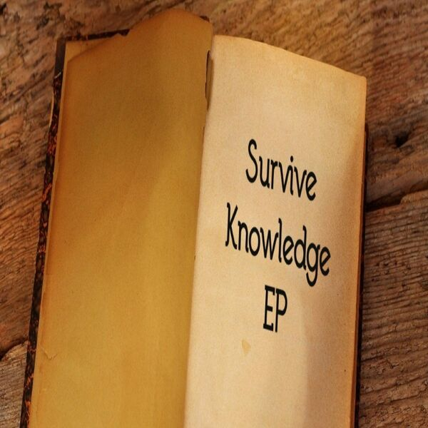 Cover art for Knowledge - EP