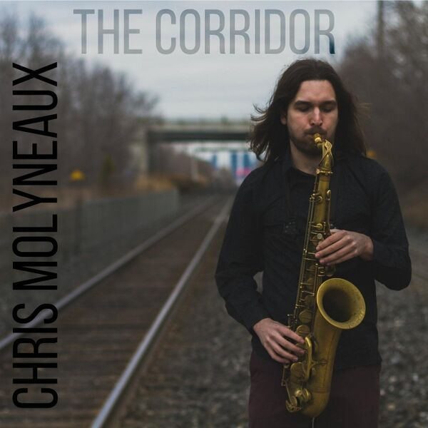 Cover art for The Corridor