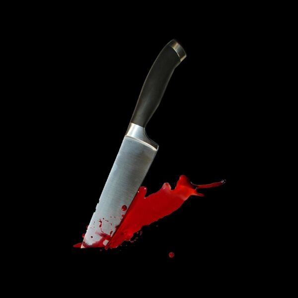 Cover art for Killer in the Night
