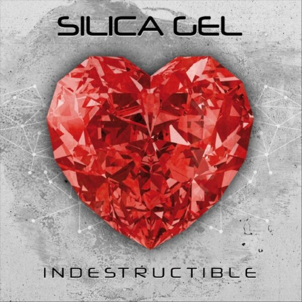 Cover art for Indestructible