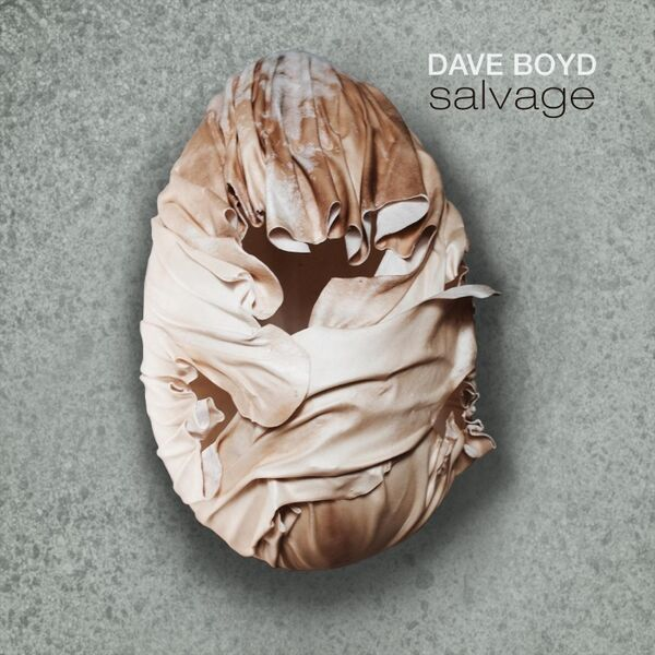 Cover art for Salvage