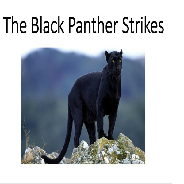 Cover art for The Black Panther Strikes