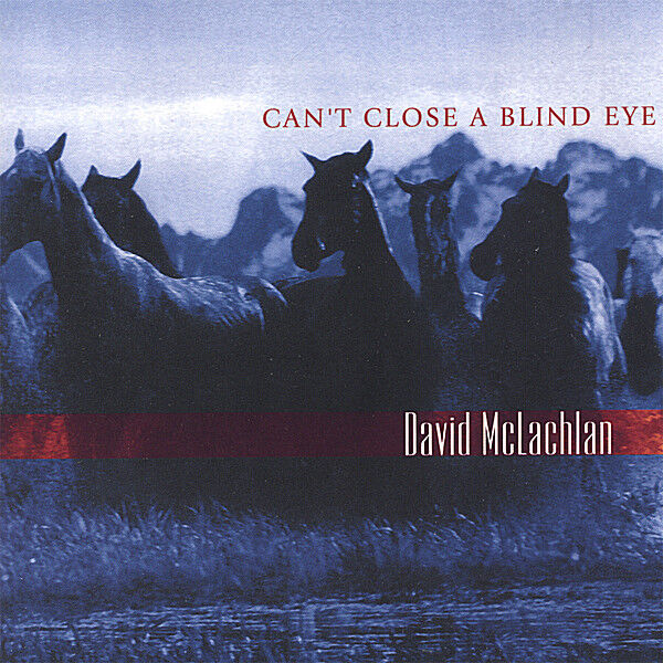 Cover art for Can't Close A Blind Eye