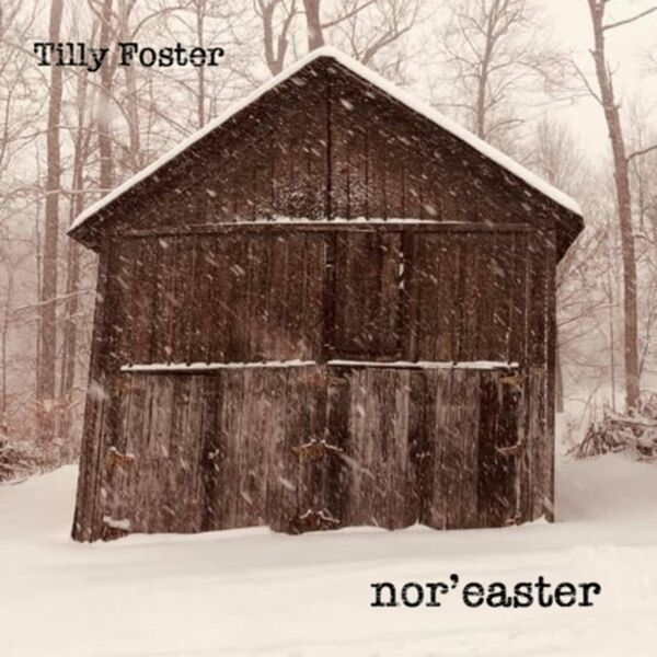 Cover art for Nor'easter