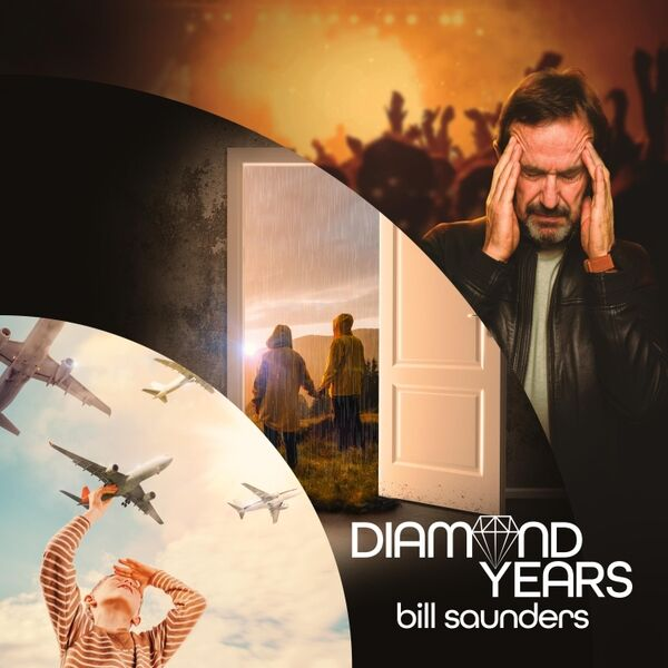 Cover art for Diamond Years