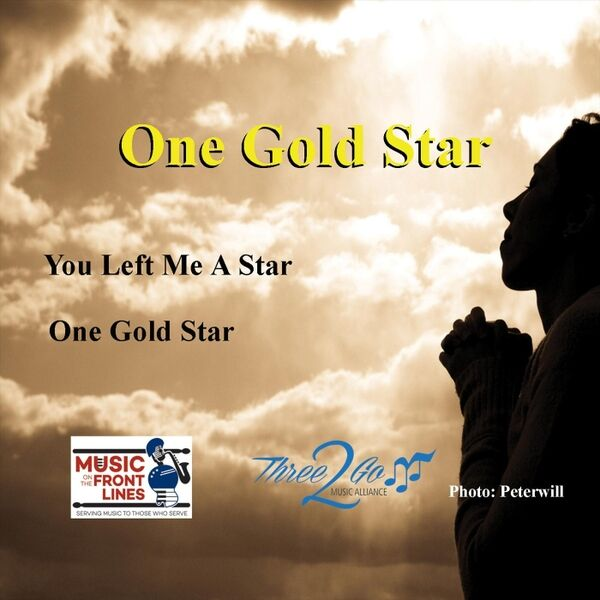 Cover art for One Gold Star