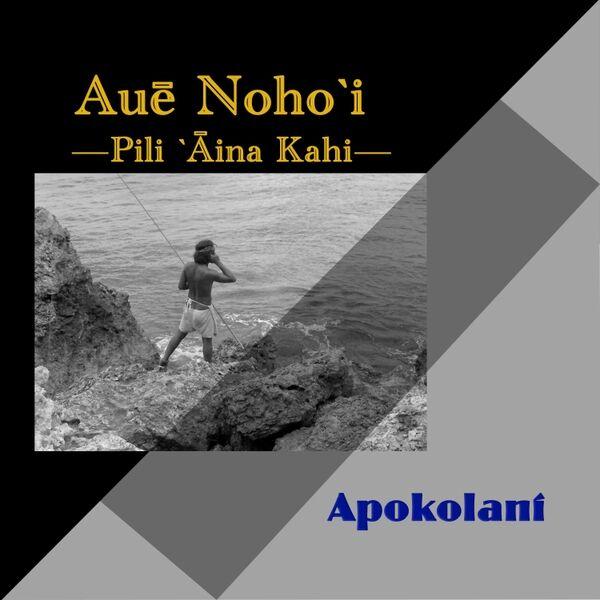 Cover art for Auē Nohoʻi (Pili Aina Kahi)