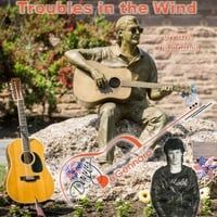 Troubles in the Wind