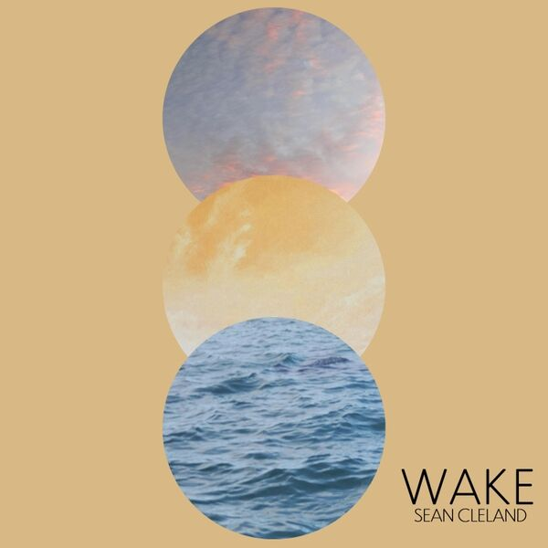 Cover art for Wake