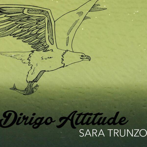 Cover art for Dirigo Attitude