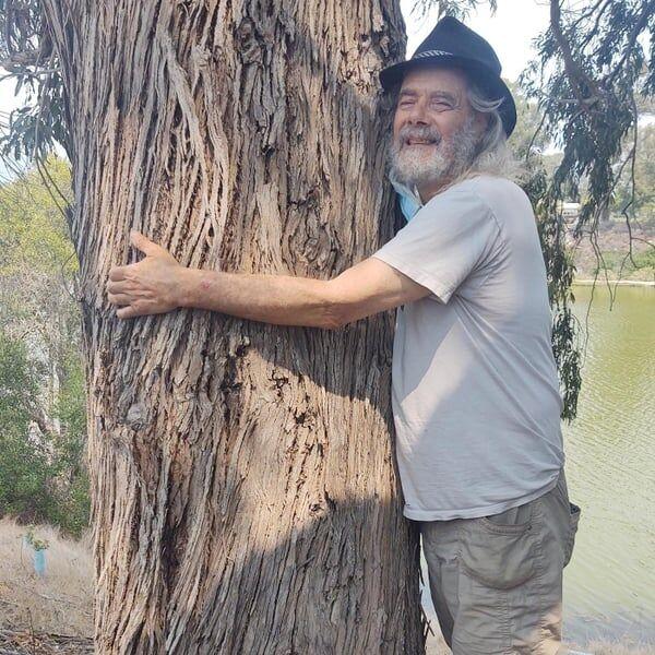 Cover art for Tree to Hug