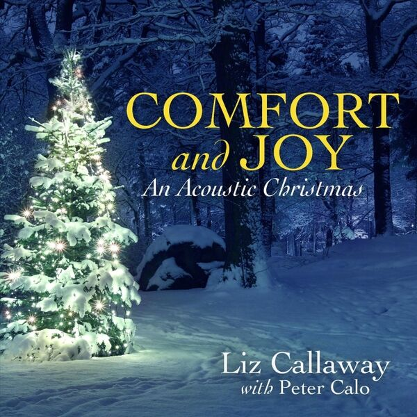 Cover art for Comfort and Joy (An Acoustic Christmas)