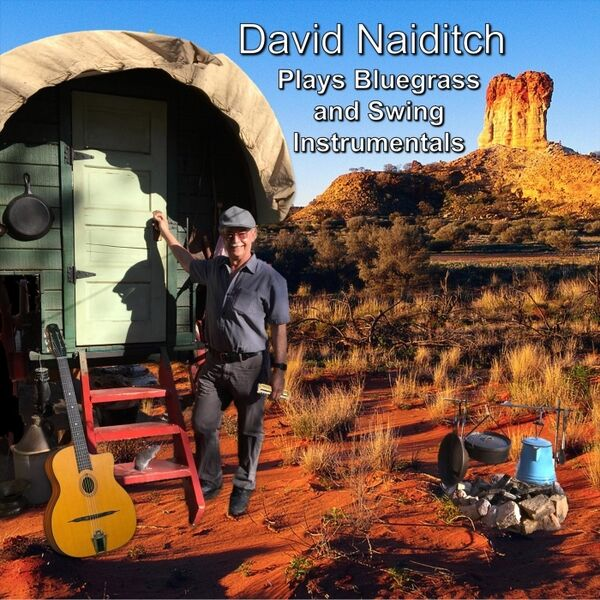 Cover art for David Naiditch Plays Bluegrass and Swing Instrumentals