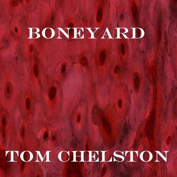 Cover art for Boneyard