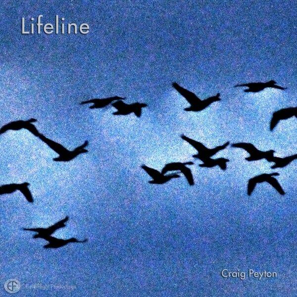 Cover art for Lifeline