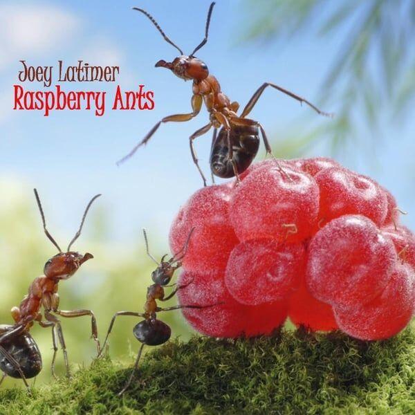 Cover art for Raspberry Ants