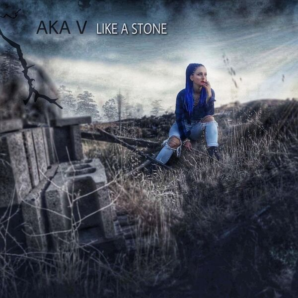 Cover art for Like a Stone