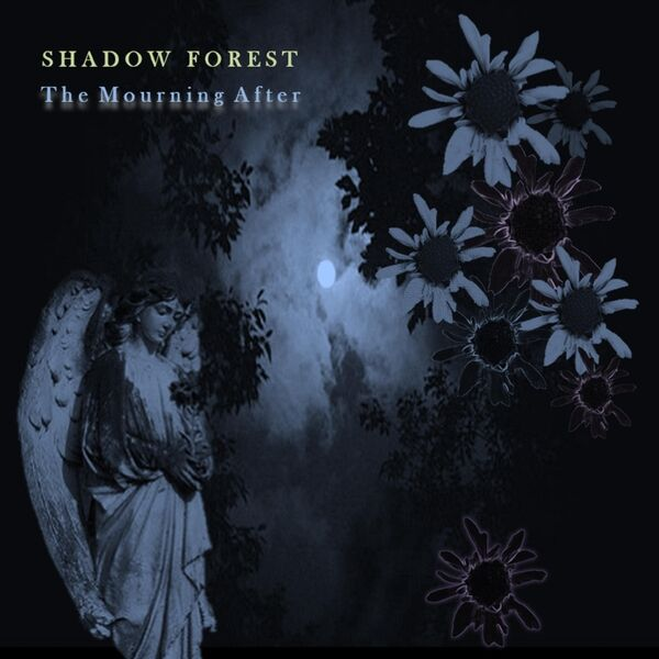 Cover art for The Mourning After
