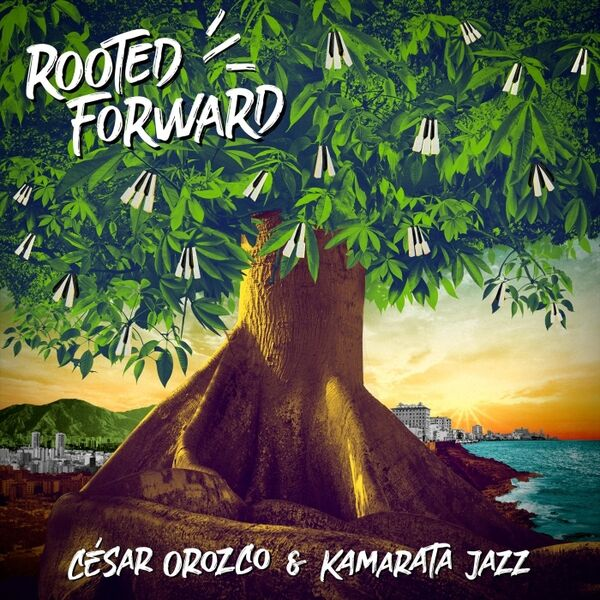 Cover art for Rooted Forward
