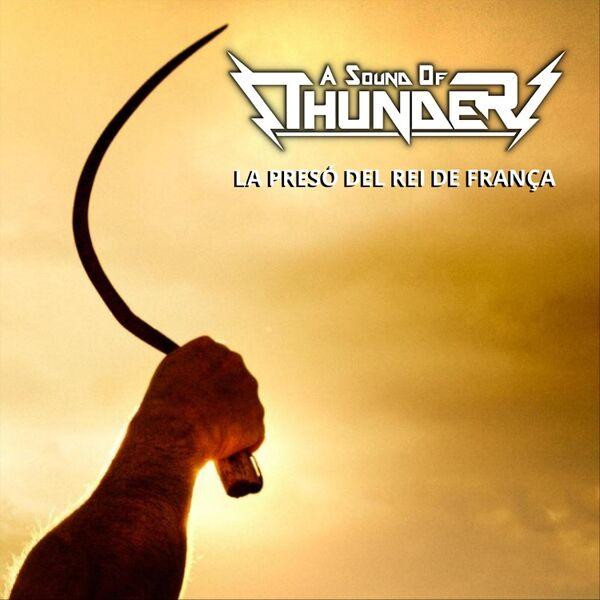 Cover art for La Presó Del Rei De França
