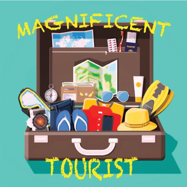 Cover art for Magnificent Tourist